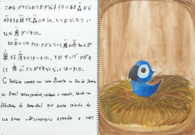 ブラジル絵本.png